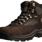 Timberland Chocorua_Chocorua Trail Mid GTX, Herren Kurzschaft Stiefel, Braun (Brown w/Green), 43 EU